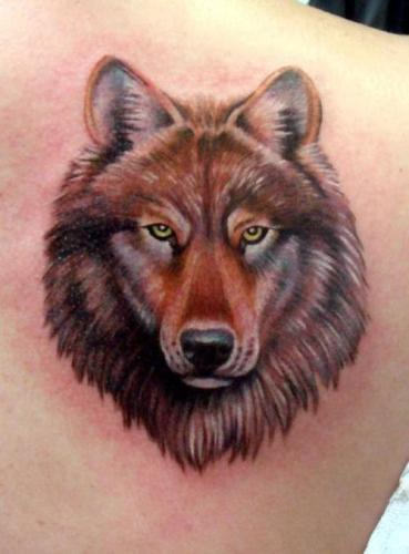 Decent Wolf Face Tattoo On Back